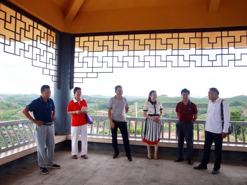 邕宁区科协代表到公司基地指导考察