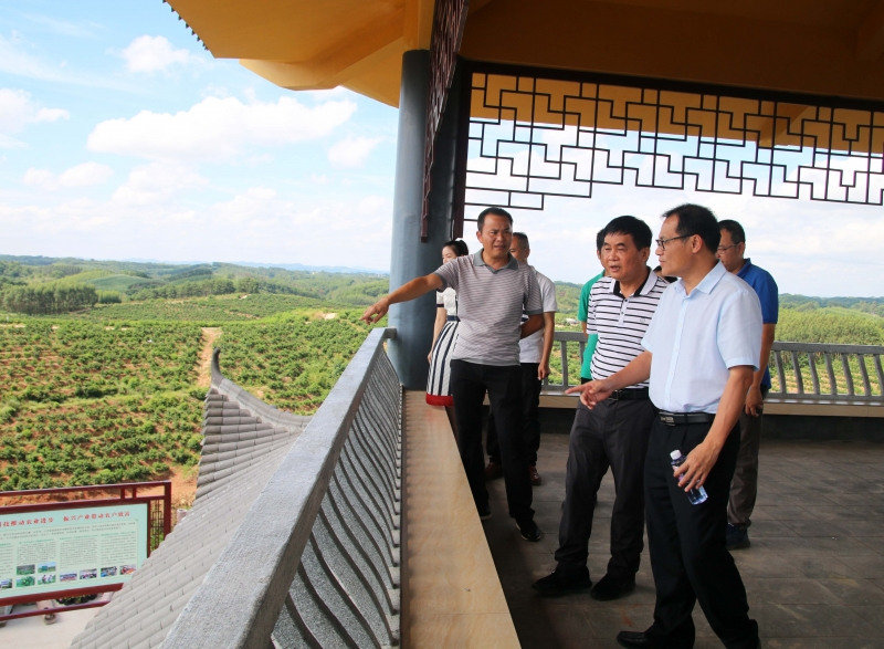 市农业农村局等部门到示范区开展调研指导工作
